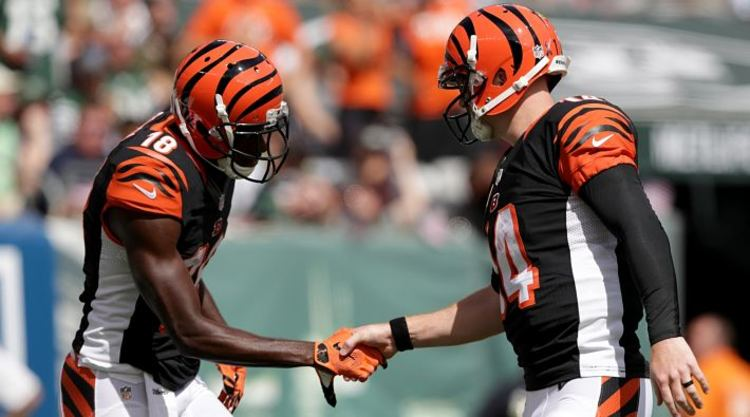Cincinnati Bengals Players shake hands