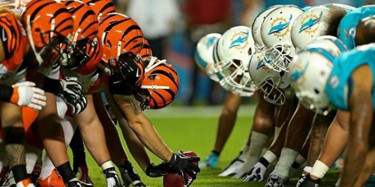 Dolphins and Bengals team ready for action