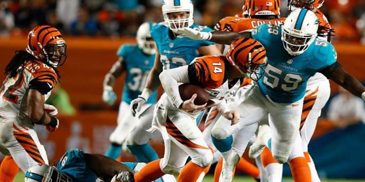 NFL Week 4 Game Dolphins vs. Bengals