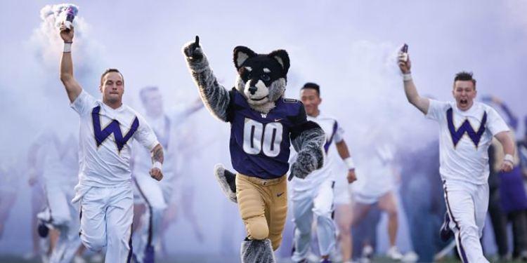 Washington Huskies Mascot