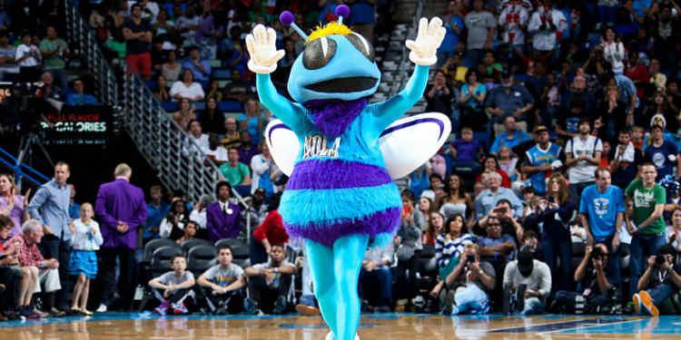 Charlotte Hornets mascot