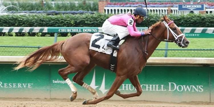 Thirstforlife Race Horse