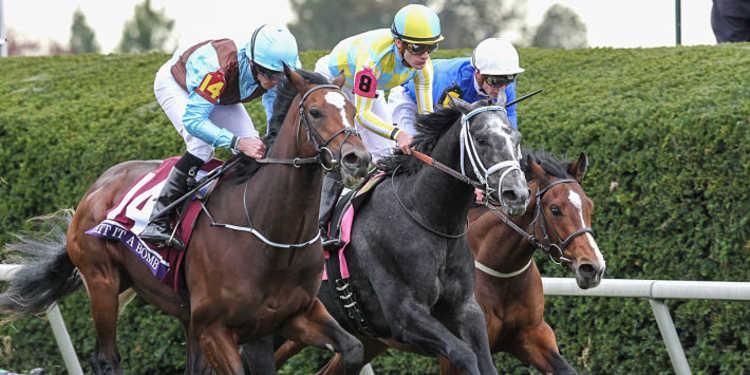 2017 Risen Star Stakes- Fair Grounds