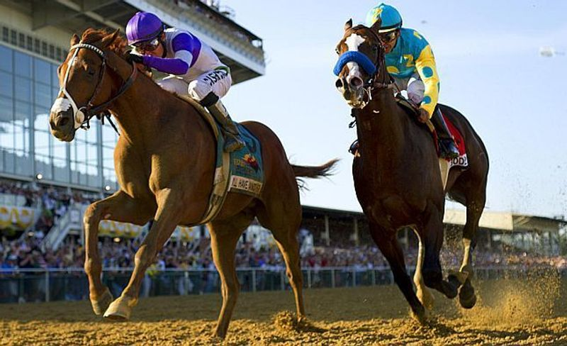 Free Picks: Preakness Stakes Odds, Picks & Betting