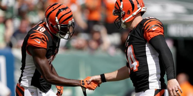 Cincinnati Bengals teammates shaking hands