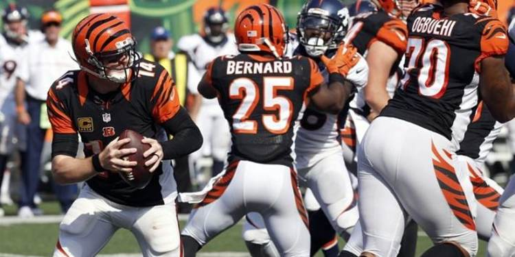 Cincinnati Bengals players in action