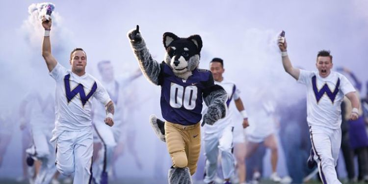 Washington Huskies Mascot