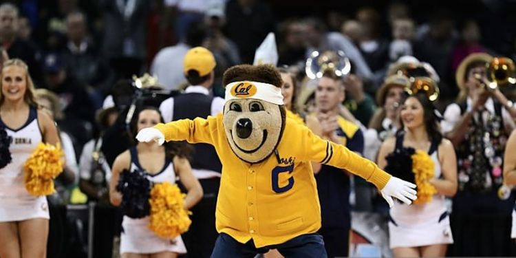 California Golden Bears mascot