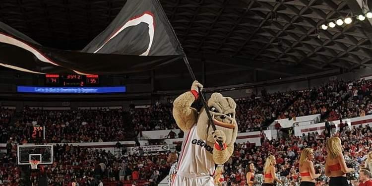 Georgia Bulldogs mascot