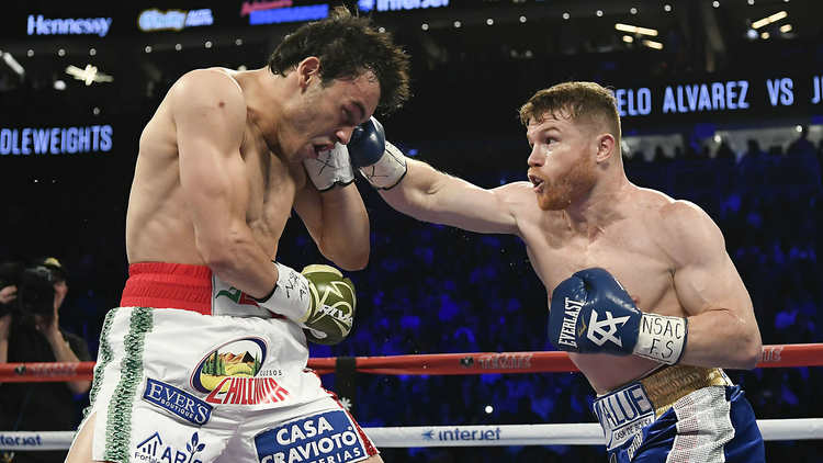 Canelo Punching Chavez Jr