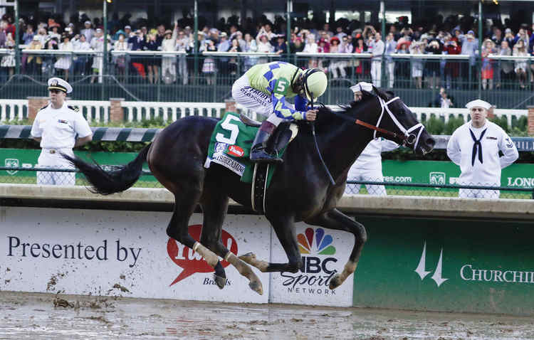 Preakness Favorite Always Dreaming Horse