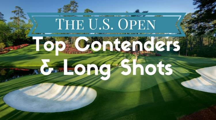Top Contenders & Long Shots