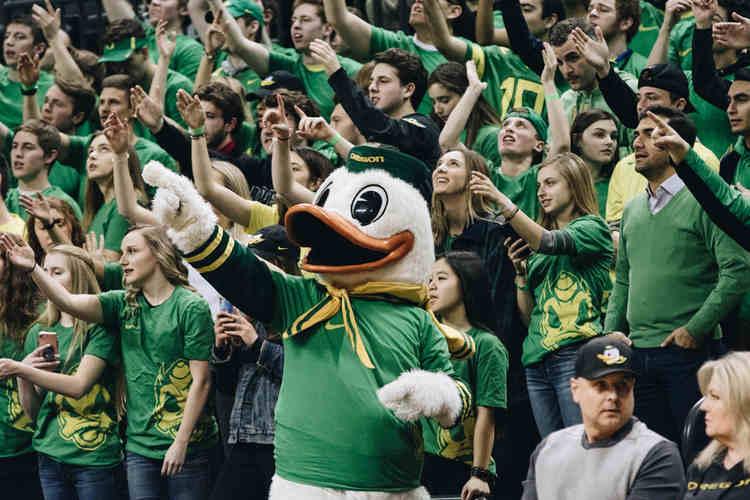 Oregon Ducks Basketball
