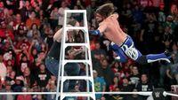 wwe ladders