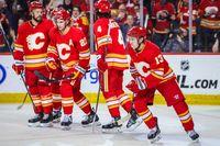 Calgary Flames  Players 2019