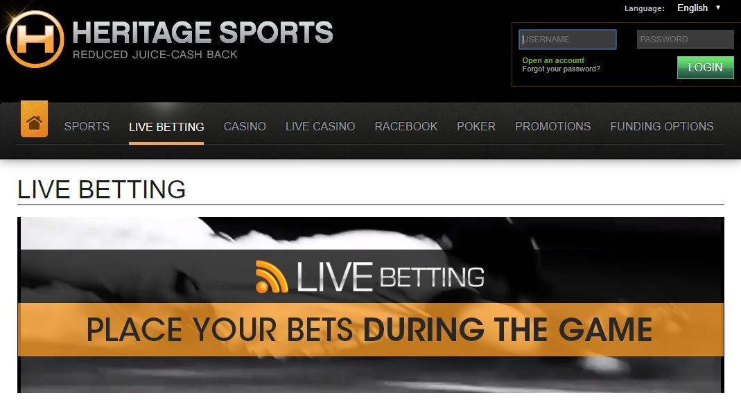 Free Sports Picks 2019 | Expert Sports Betting Predictions Today